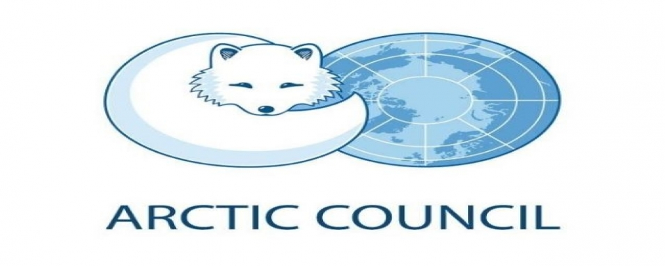 The Arctic Council: its structure and role in international cooperation of Arctic States