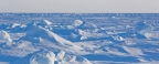 International expert council on cooperation in the Arctic is to hold annual meeting in St Petersburg